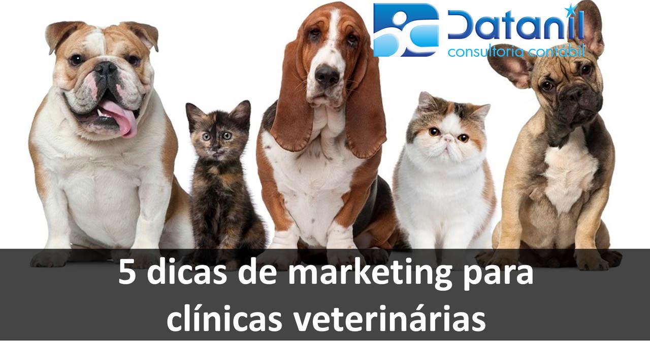 5 Dicas De Marketing Para Clínicas Veterinárias