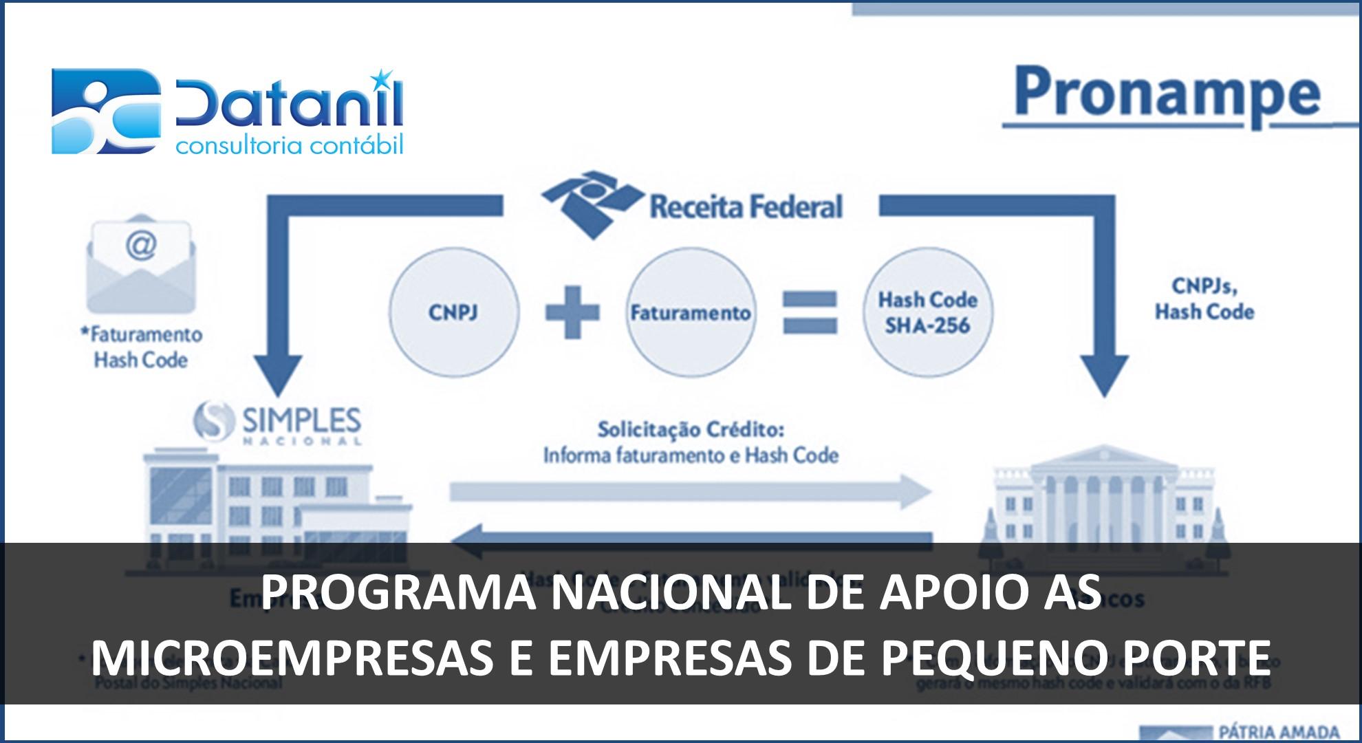 Programa Nacional De Apoio As Microempresas E Empresas De Pequeno Porte